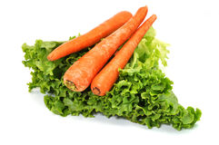 Zanahorias y lechuga Fotografía de archivo