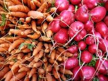 Zanahorias y rábanos Fotografía de archivo