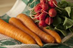 Zanahorias y rábanos orgánicos Fotografía de archivo