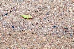 Zand als achtergrond Stock Fotografie