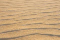 Zand in de woestijn van de Sahara Stock Foto