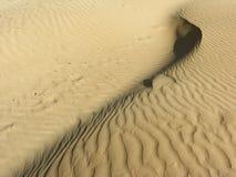 Zand-duin Stock Afbeelding