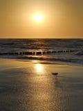 Zand en oceaan bij zonsondergang, aard Royalty-vrije Stock Afbeeldingen
