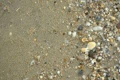 Zand en shell Royalty-vrije Stock Afbeeldingen