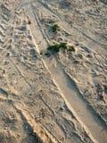 Zand met drukken Royalty-vrije Stock Afbeelding