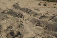 Zand op het strand Royalty-vrije Stock Fotografie
