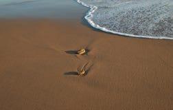 Zand van het strand Royalty-vrije Stock Fotografie