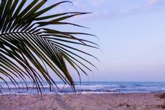 Zand, Zon en Overzees in het Tayrona-Park royalty-vrije stock foto