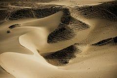 Zandduin in Nubra-Vallei Royalty-vrije Stock Afbeeldingen