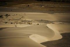 Zandduin in Nubra-Vallei Stock Afbeelding