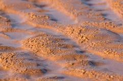 Zandduin op het strand Stock Foto