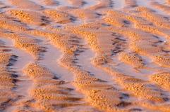 Zandduin op het strand Stock Afbeelding