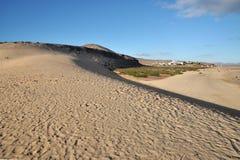 Zandduin op het strand Royalty-vrije Stock Foto's