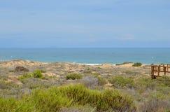 Zandduinen aan het Overzees Stock Afbeelding