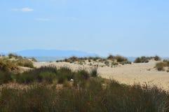 Zandduinen bij Egeïsche overzees in Kusadasi, Turkije stock afbeelding