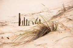 Zandduinen bij het oceaanstrand in Frankrijk Royalty-vrije Stock Fotografie