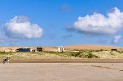 Zandduinen in Cabo Polonio, Uruguay Royalty-vrije Stock Afbeelding