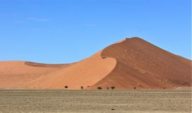 Zandduinen in Deadvlei Namibië royalty-vrije stock afbeeldingen