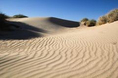 Zandduinen dichtbij Ningaloo Stock Foto