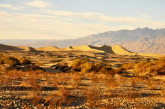 Zandduinen, Doodsvallei stock afbeeldingen