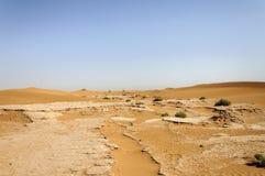Zandduinen, Draa-Vallei (Marokko) royalty-vrije stock foto