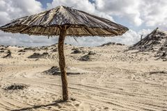 Zandduinen en stro alleen paraplu royalty-vrije stock foto's