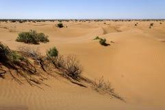 Zandduinen, Hamada du Draa, Marokko. stock foto's