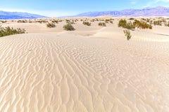 Zandduinen in het Nationale Park van de Doodsvallei, Californië, de V.S. Royalty-vrije Stock Afbeelding