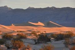 Zandduinen in het Nationale Park van de Doodsvallei, Californië, de V.S. Stock Fotografie