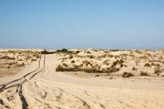 Zandduinen in het Nationale Park van Donana, Matalascanas, Spanje royalty-vrije stock afbeelding