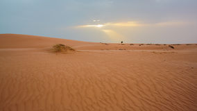 Zandduinen in Mauretanië Royalty-vrije Stock Fotografie
