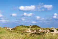 Zandduinen met gras stock fotografie