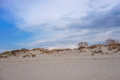 Zandduinen met het kweken van bomen op de kust van de Oostzee tegen de blauwe hemel royalty-vrije stock afbeeldingen