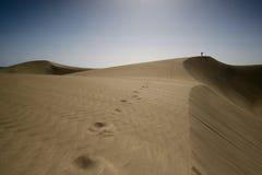 Zandduinen met persoon op de heuvel Royalty-vrije Stock Foto's