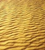 Zandduinen op het strand royalty-vrije stock fotografie