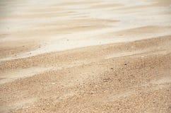 Zandduinen op Noordzee stock foto