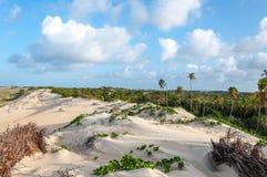 Zandduinen, Pititinga, Geboorte (Brazilië) royalty-vrije stock foto's