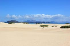 Zandduinen van Corralejo, Fuerteventura, Canarische Eilanden. Stock Foto