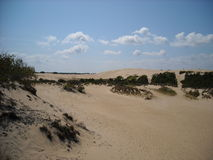 Zandduinen van de buitenbanken Stock Foto