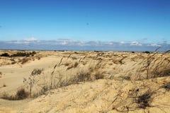 Zandduinen van de grootste woestijn van Europa ` s Royalty-vrije Stock Foto's