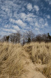 Zandduinen van meer Michigan 2 Stock Foto's