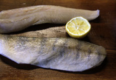 Zander Fischfilets Stockbilder