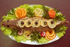 Zander fish Stock Photo