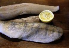 Zander fish fillets Stock Images