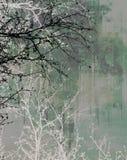 Zanderige de lentetakken Royalty-vrije Stock Afbeeldingen