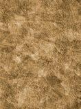 Zanderige textuur als achtergrond Royalty-vrije Stock Afbeeldingen