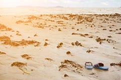 Zandig overzees strand met geworpen algen en sandals in voorgrond op de zomeravond Stock Foto