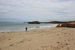 Zandig strand, Grote Oceaanweg, Victoria, Australië Royalty-vrije Stock Fotografie