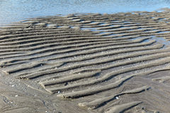 Zandig strand at low tide Stock Foto