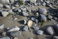 Zandig strand met grote keien royalty-vrije stock foto